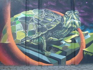 graffiti-art-turtle-Eindhoven-Berenkuil