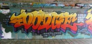 Graffiti at Berenkuil @ Eindhoven