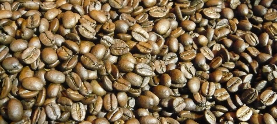 Bean-Brothers-coffee-Eindhoven-Berg-stadsbranderij