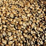 Bean-Brothers-coffee-best-koffie-Eindhoven-Berg-stadsbranderij-thee-tea-drinken